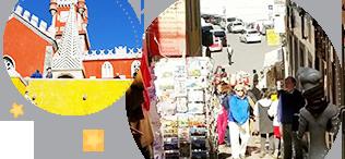 モアジュニア & グローバル英会話